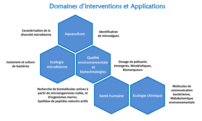 OOB Bio2Mar domaines d'interventions et d'applications